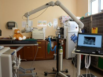 The room used for dental work, Room includes dental equipment and kennels for animals