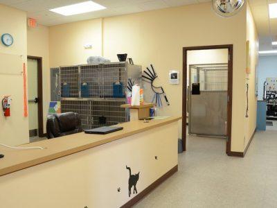 Nease-Animal-Hospital-12